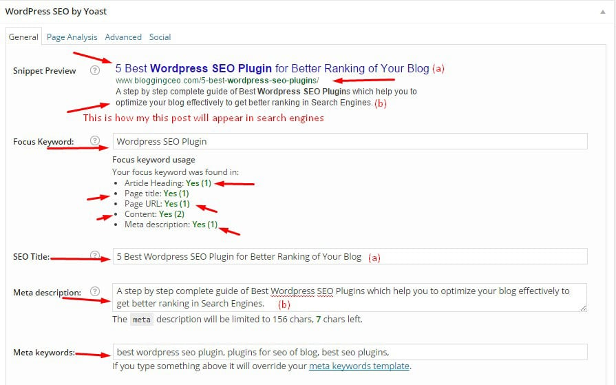 Snippet Preview for Blogging CEO Post