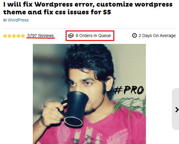 wordpress fixing gig